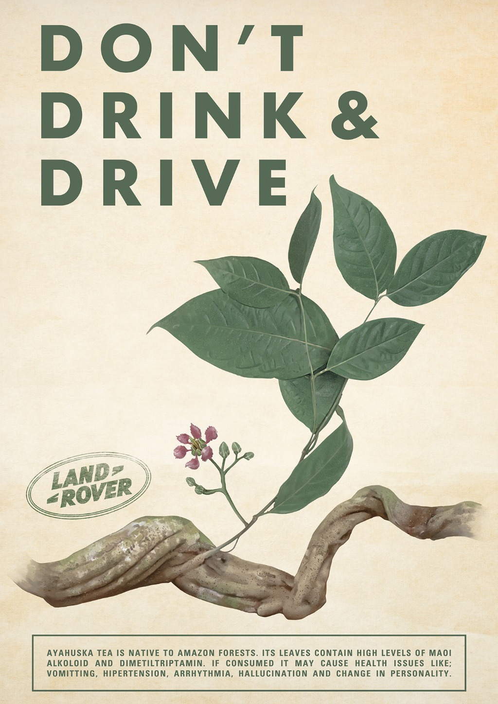 Don't Drink & Drive - Ayahuasca